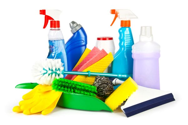 Brushes, a bucket, a spray of water and a rag for cleaning service.